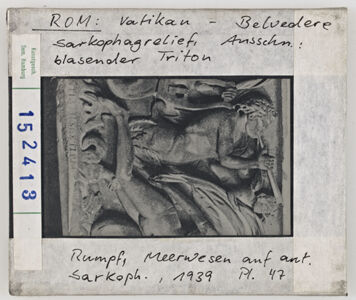 translation missing: de.preview Rom: Vatikan-Belvedere, Sarkophag-Relief (Detail: blasender Triton)