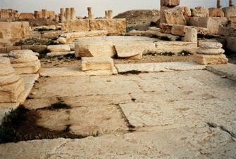 Vorschaubild Palmyra, Senat
