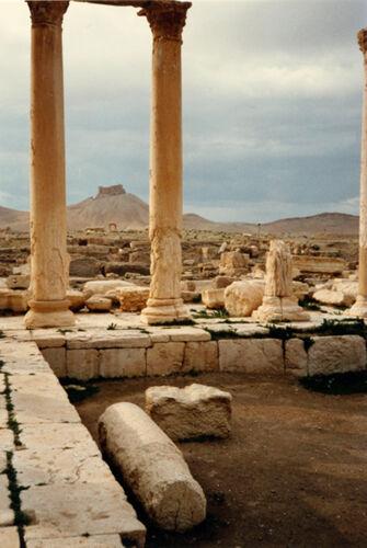 Vorschaubild Palmyra, Blick von Diokletiansthermen zur arabischen Burg