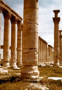 translation missing: de.preview Palmyra, Kolonnaden
