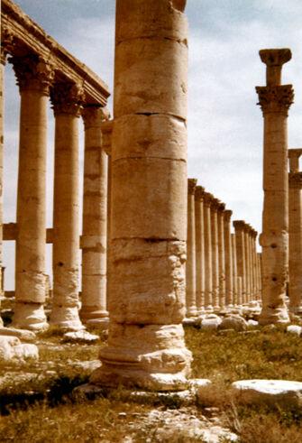 Vorschaubild Palmyra, Kolonnaden