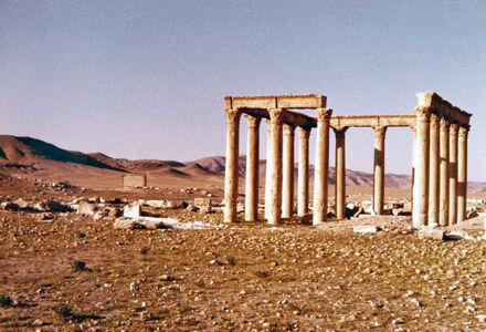 translation missing: de.preview Palmyra
