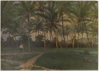 Vorschaubild Kokosplantage