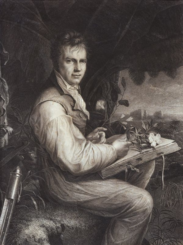 preview Bildnis Alexander von Humboldt